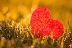 Höstblad med klippt hjärta royaltyfria foton