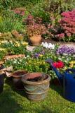 höstblomkrukar arbeta i trädgården nya växter Royaltyfri Bild