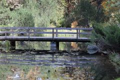 höstbotanisk trädgård Royaltyfri Fotografi