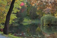 höstbotanisk trädgård Fotografering för Bildbyråer
