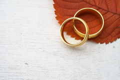 Höstbröllopinbjudan Royaltyfri Bild