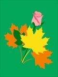 Höstbukett Royaltyfria Bilder