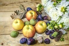 Höstbukett av vita dahlior med äpplen, katrinplommoner med muttrar och fikonträd Arkivfoton