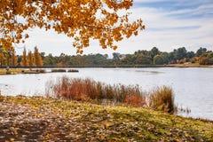 Höstdag på sjön royaltyfri bild