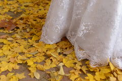 Höstdagar i materielbröllop Arkivbilder
