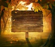 Höstdesign - skogtecken Royaltyfria Foton