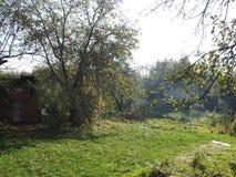 Hösteftermiddag i trädgården Royaltyfri Foto