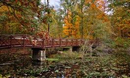 Hösten överbryggar Arkivbild