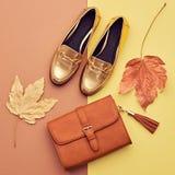 Hösten ankommer fashion ladyen fallen låter vara naturlig textur vibrerande minsta Arkivfoton