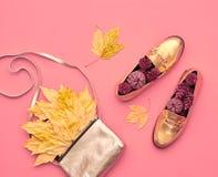 Hösten ankommer fashion ladyen fallen låter vara naturlig textur vibrerande minsta Royaltyfri Bild