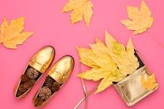 Hösten ankommer fashion ladyen fallen låter vara naturlig textur vibrerande minsta Royaltyfri Fotografi