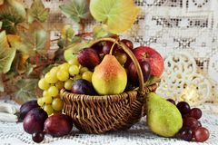 Hösten bär frukt i vickerkorg royaltyfri bild