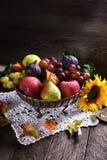 Hösten bär frukt stilleben arkivfoto