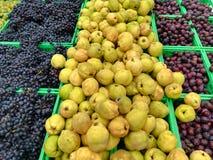 Hösten bär frukt utsatt till marknaden royaltyfri foto