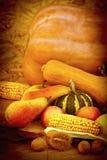 hösten bär fruktt grönsaker Arkivbilder