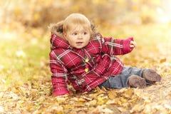 hösten behandla som ett barn att sitta för leaves royaltyfri fotografi