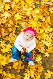 hösten behandla som ett barn leaves Arkivbild