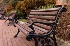 hösten benches parklandskap Fotografering för Bildbyråer