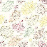 hösten blad den seamless modellen Arkivbild