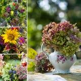Hösten blommar collage royaltyfri foto