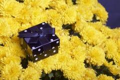 Hösten blommar i en kruka Gul chrysanthemum Därefter är en gåva i en fyrkantig ask arkivfoto