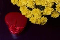 Hösten blommar i en kruka Gul chrysanthemum Därefter är en gåva i en tenn- ask i formen av en hjärta på en grå färgbakgrund fotografering för bildbyråer