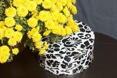 Hösten blommar i en kruka Gul chrysanthemum Nästa gåva i en kartong med en prydnad på en grå färgbakgrund arkivfoto