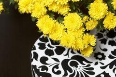 Hösten blommar i en kruka Gul chrysanthemum Nästa gåva i en kartong med en prydnad på en grå färgbakgrund fotografering för bildbyråer