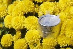 Hösten blommar i en kruka Gul chrysanthemum Nästa gåva i en silverask arkivfoton