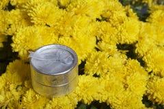 Hösten blommar i en kruka Gul chrysanthemum Nästa gåva i en silverask royaltyfri bild