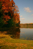 hösten colors s Royaltyfri Fotografi