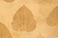 hösten colors seamless textur för leavesmodell Royaltyfri Fotografi