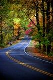 hösten colors skogen Arkivfoto