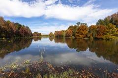 Hösten färgade träd och sidor på vattnet arkivfoton