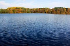Hösten färgar Royaltyfri Foto