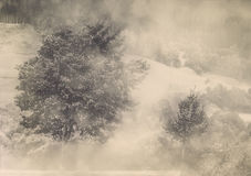 Hösten färgar Arkivfoton