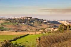 Hösten färgar i Monferrato kullar, Piedmont, Italien royaltyfria foton