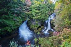 Hösten färgar på den lägre Ryuzu vattenfallhandfatet i Nikko, den Tochigi prefekturen, Japan royaltyfria bilder