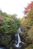 Hösten färgar på den Ryuzu vattenfallhandfatet i Nikko, den Tochigi prefekturen, Japan arkivbilder