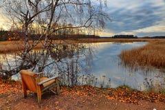 Hösten för ensamhet på senare Royaltyfria Foton