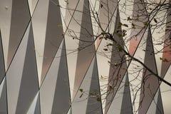 Hösten förgrena sig Arkivbilder