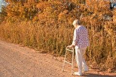 hösten går Royaltyfria Foton