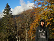 Hösten går i bergen Royaltyfri Bild
