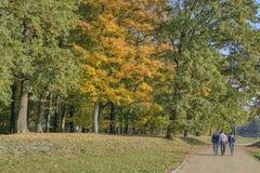 Hösten går vänner parkerar banan arkivfoton