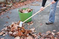 hösten hands leaves som sopar att fungera arkivbilder
