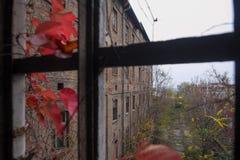 Hösten i övergiven fabrik arkivbilder