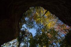 Hösten i Fruska Gora royaltyfria bilder