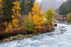 Hösten i Leavenworth presenterade med flodflöde och dimma royaltyfri foto