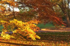 Hösten i Prague, parkerar den favorit- turist- destinationen Letna sady Letenske, Tjeckien fotografering för bildbyråer
