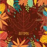 hösten innehåller banan för mappramleaves Arkivfoto